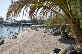 חוף ריף הדולפינים