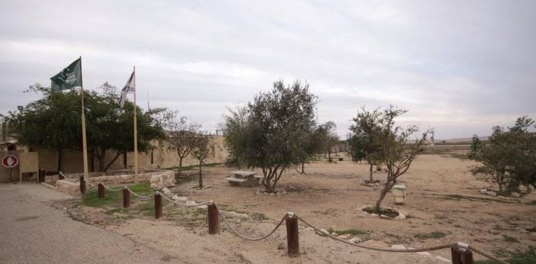 חניון תל ערד-ציפי כהן