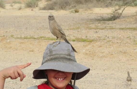 ילד עם ציפור